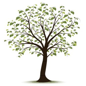 royalty-free-tree-clip-art-83838